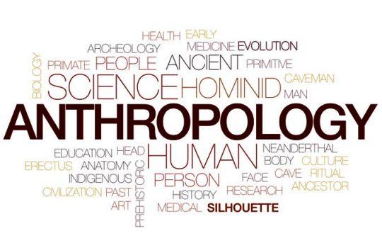 Definsi Antropologi Pengertian Jenis Cakupan Kajian Kegiatan Antropolog